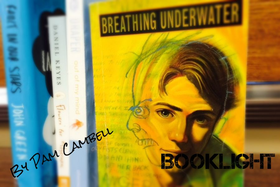 Breathing underwater by alex flinn essay