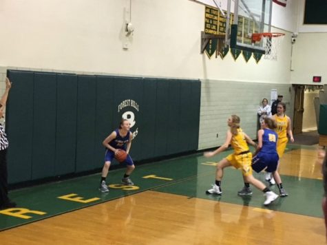 Lady Devils lose in first round