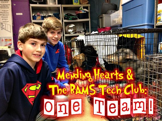 Brothers Corey and Blake Johnston are among 22 Tech Club students volunteering at Mending Hearts.