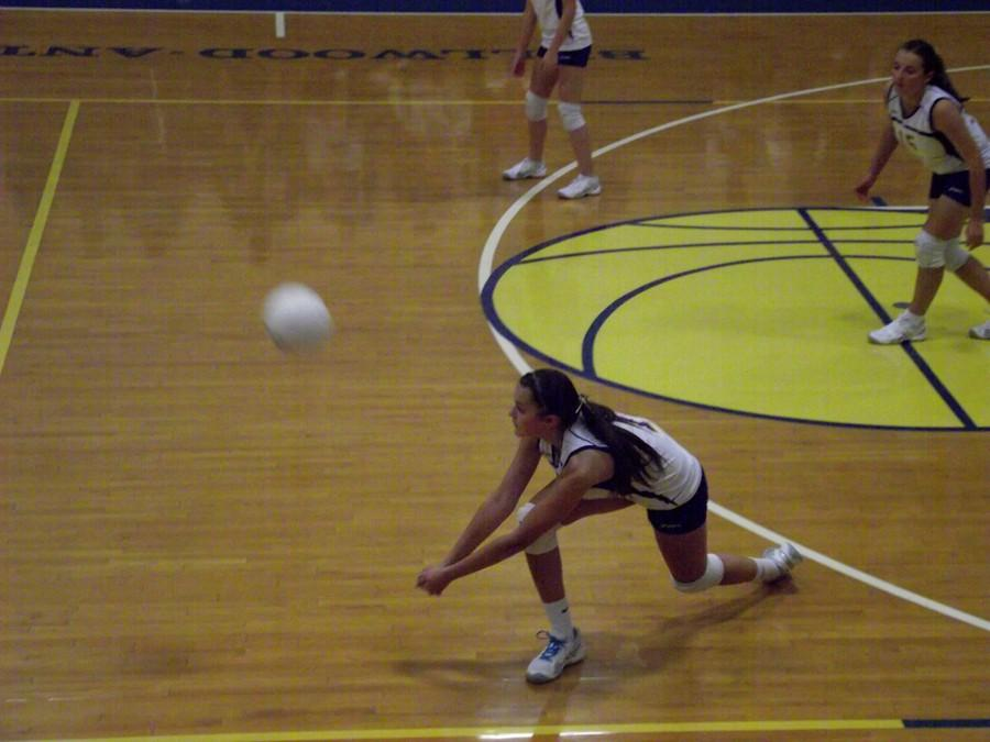 Abby+Luensmann+has+stuffed+the+stat+sheet+for+the+volleyball+team+this+year.