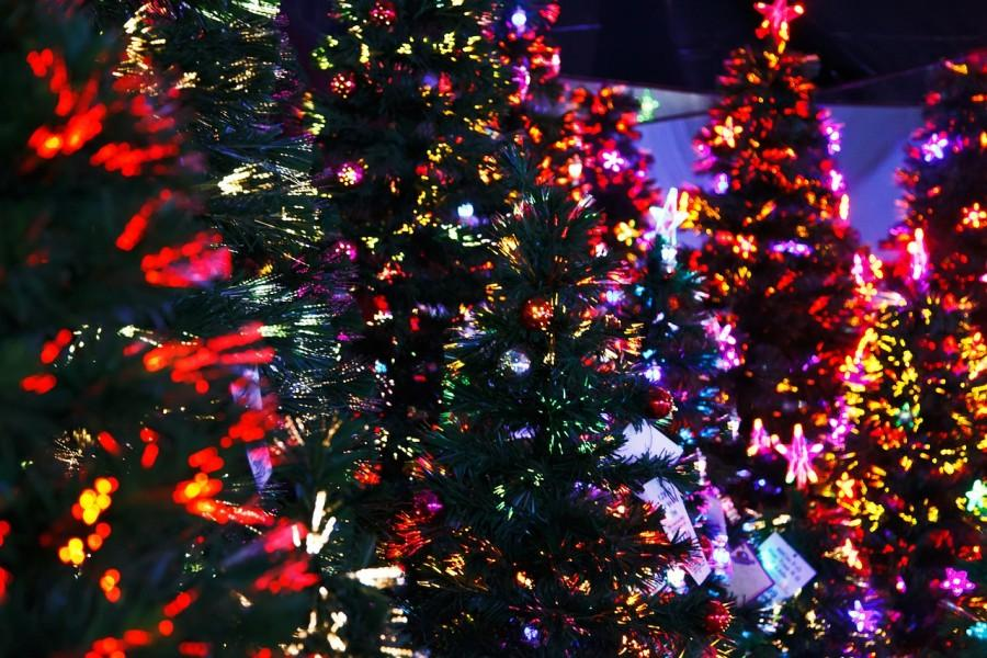 Real or Fake?  The Christmas tree debate continues...