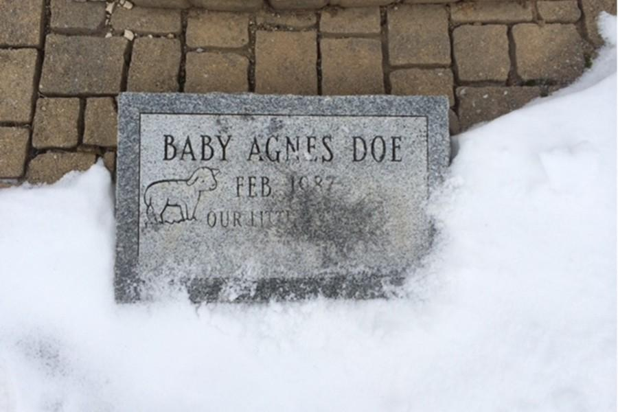 The memorial shrine for Baby Agnes Doe at Oak Grove Cemetery is the destination of this Sundays Respect for Life March.
