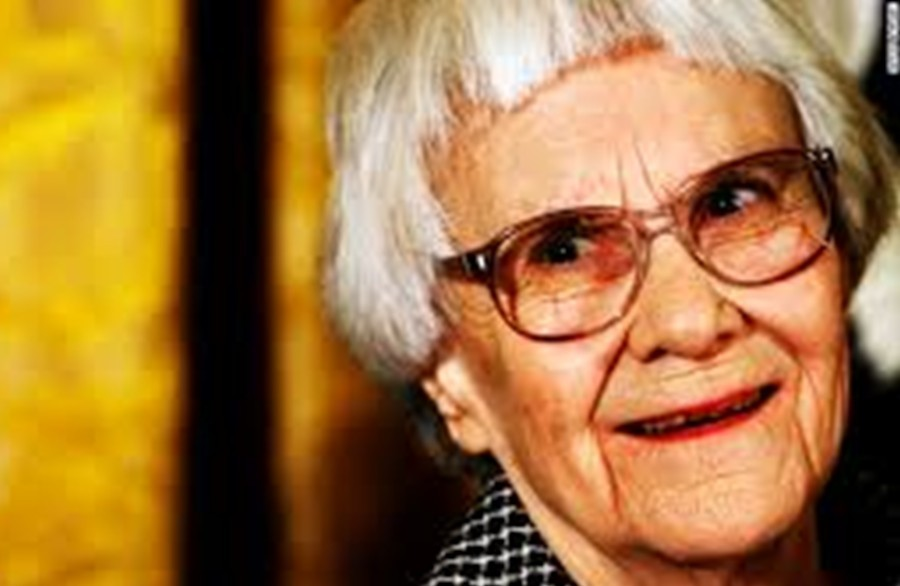 Harper Lee surprised Americans everywhere when she announced she would be publishing her book Go Set a Watchman.