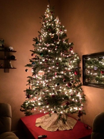 Many people prefer the scent and feel of a real Christmas tree.