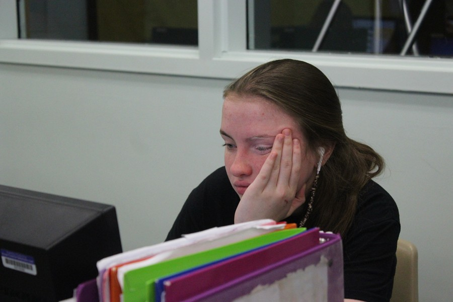 Freshman Aubree Reiter spends hours updating her blog each week.