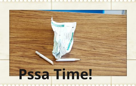 We survived the PSSA tests!