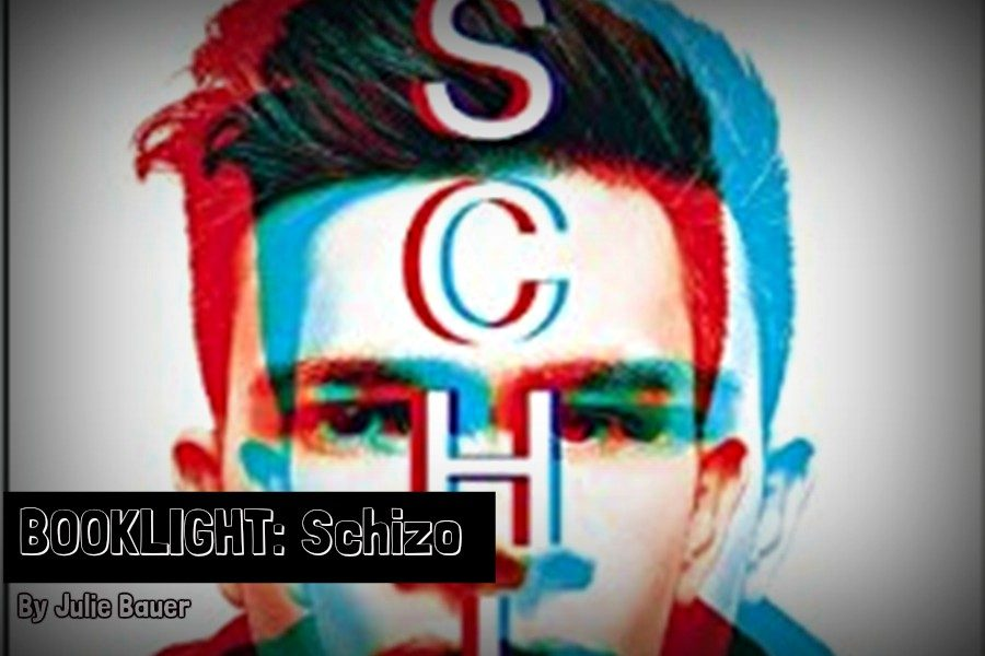 Schizo is a novel by Nic Sheff.