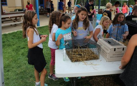 Myers students loved the petting zoo at the annual Ag Day.