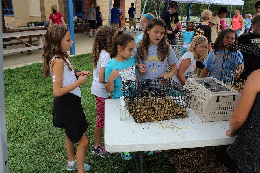 Myers+students+loved+the+petting+zoo+at+the+annual+Ag+Day.