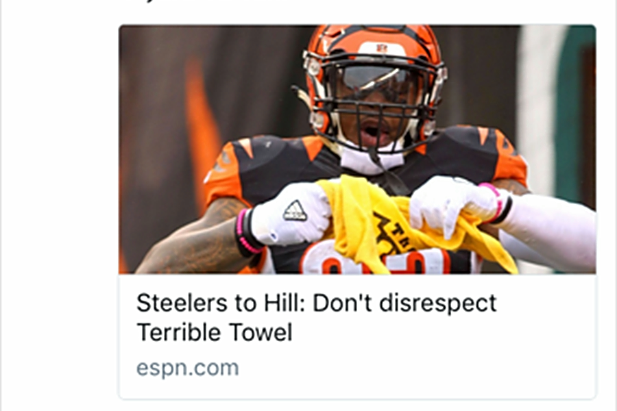 The Bengals made another mistake against the Steelers when they dissed the Terrible Towel.