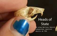 Squirrel skulls have become the focus of research for Mallory Harold.