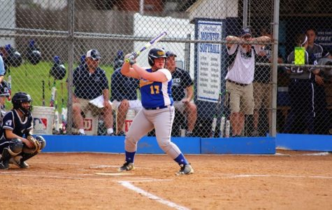 Bellwood-Antis softball team losses another