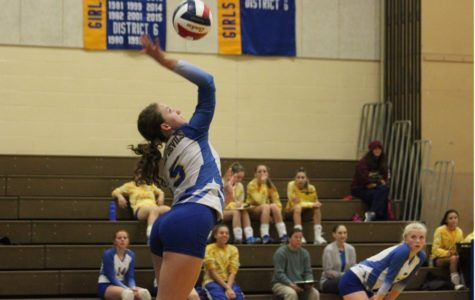 Volleyball suffers loss in first round of playoffs