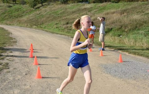 SPORTS ROUND-UP: Bartlett takes second in ICC