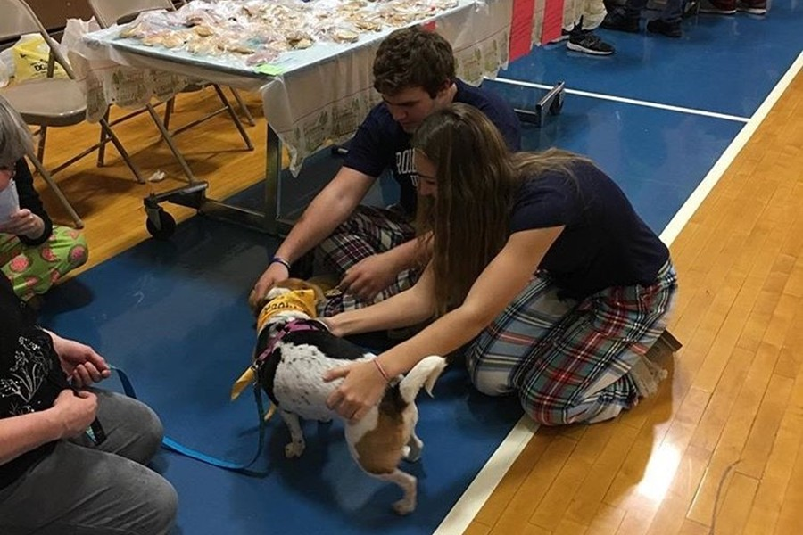 There were plenty of things to do at least year's activity fair, perhaps none more popular than visiting the puppies from the Central Pennsylvania Humane Society.