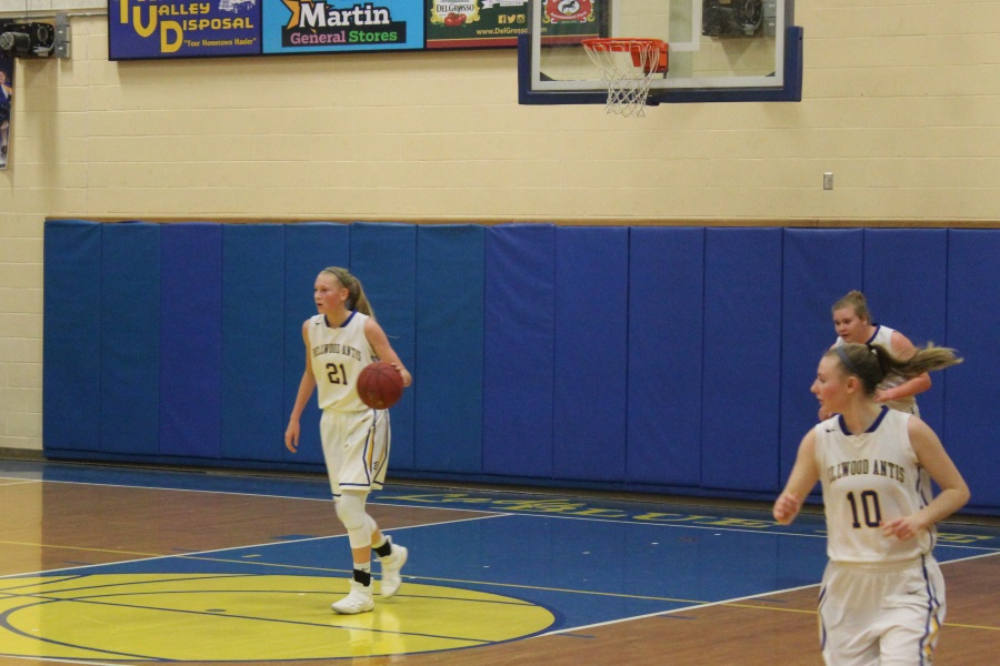 Alli Campbell played a big role in the Lady Blue Devils win over Kane