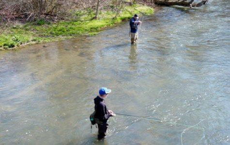 Tips for a successful fishing season