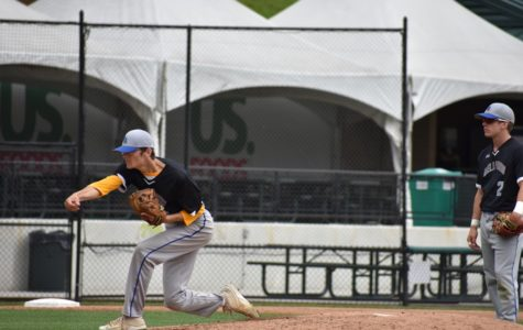 Blue Devil baseball team advances in PIAAs
