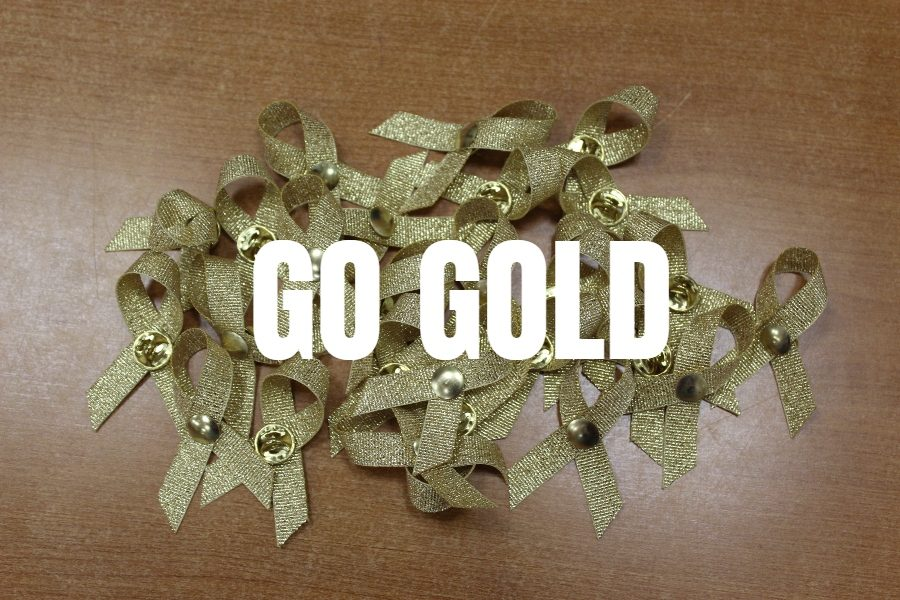 Tonight is the annual Gold Ribbon Game for Bellwood-Antis.