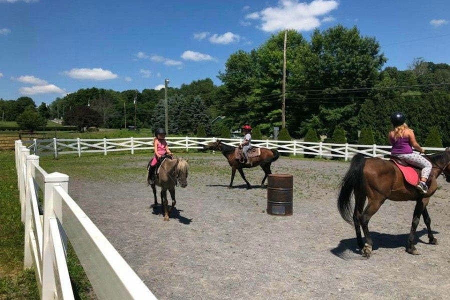 D & P Creekside Farm offers horseback riding and many other equine-related activities.