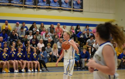 Boys and girls hoops post wins over Williamsburg