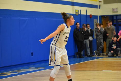 Blue Devils fall to Ligonier