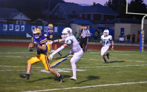Pellegrine's kick delivers Hornets their first loss