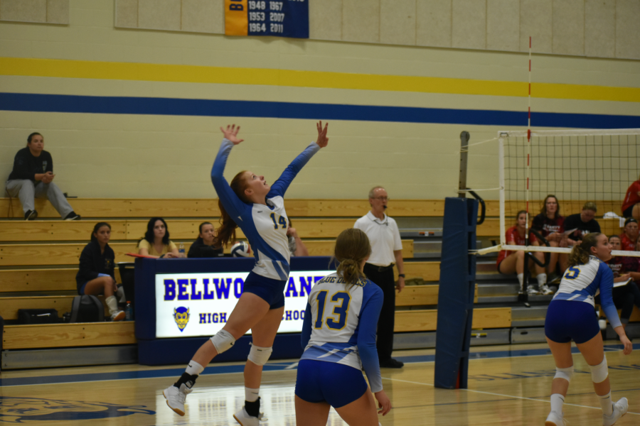 Karlie Feathers drives a shot over the net in Monday's volleyball game against Everett.