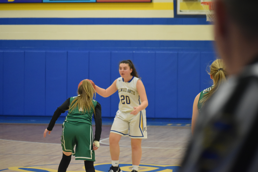 Bellwood-Antis vs. Juniata Valley; January 3, 2020. (Jon Kost)
