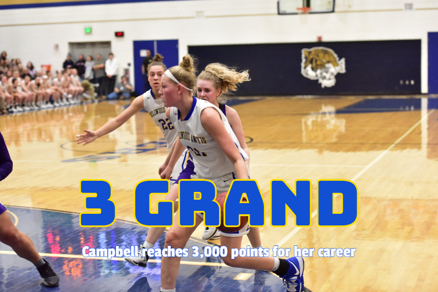 Alli+Campbell+reached+another+career+milestone+by+netting+her+3%2C000th+point+against+Redbank+Valley.