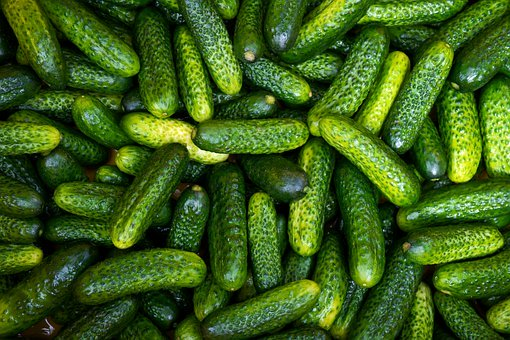 All meals at Bellwood-Antis School District are to be replaced with pickles, as of last nights school board ruling.
